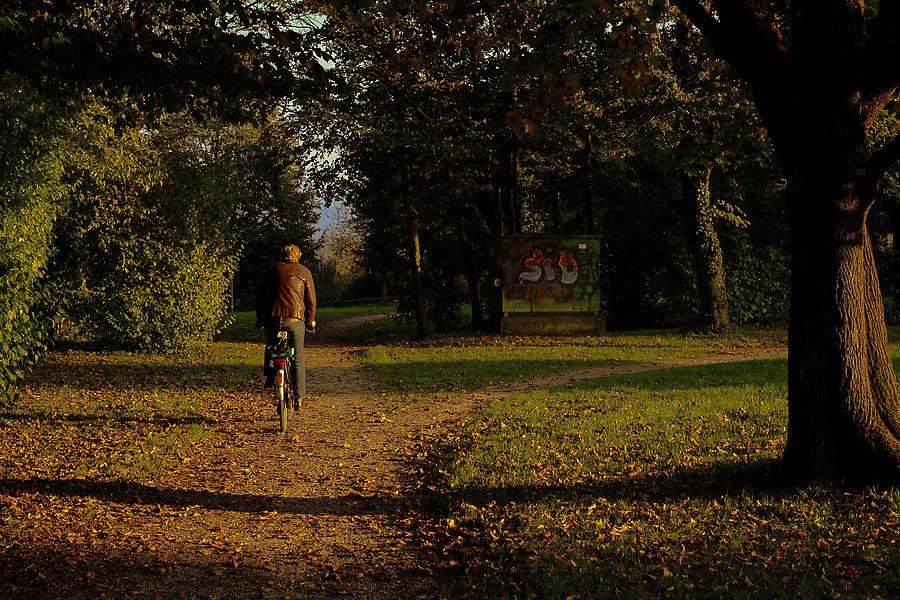 Autumn-28-10.jpg