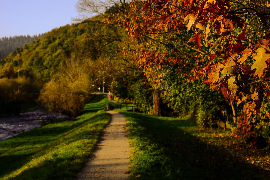 Autumn-28-6.jpg