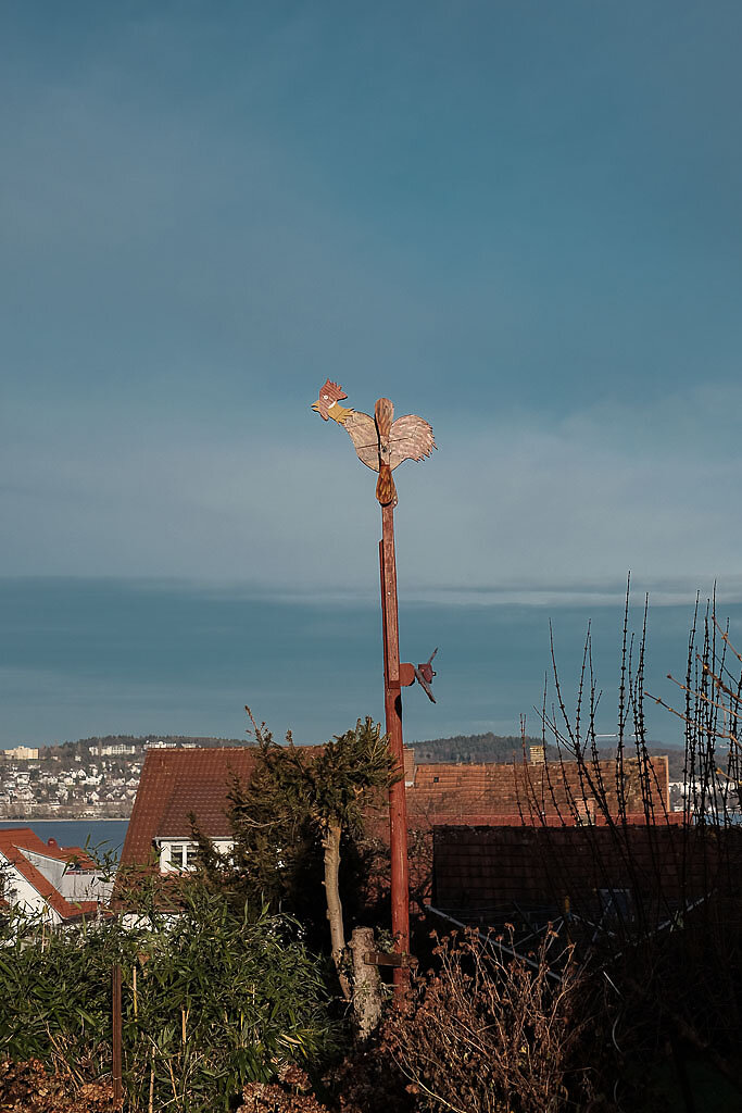 Bodensee-01-8.jpg