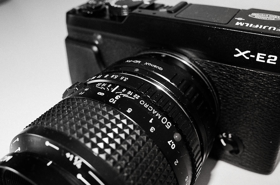 Minolta50mmMacro-21-3.jpg