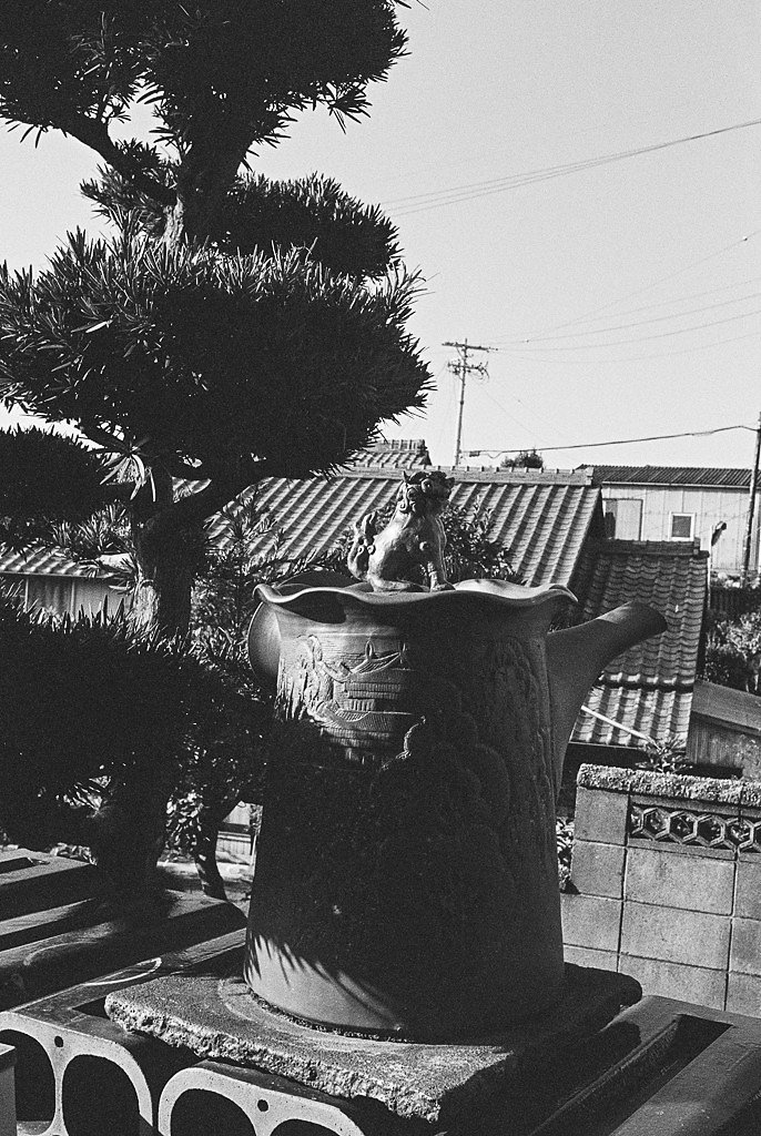 Tokoname-Summicron-20151008-10.jpg